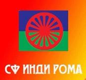 INDI ROMA logo